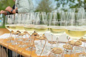 Weinwanderung Bad Sulza