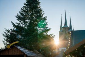 Weihnachtsgeschenke aus Erfurt