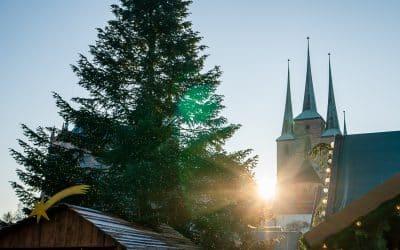 9 kulinarische Weihnachtsgeschenke aus Erfurt