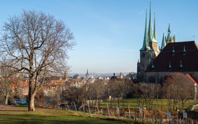 #keeperfurtalive Lieferservice und Take-away in Erfurt