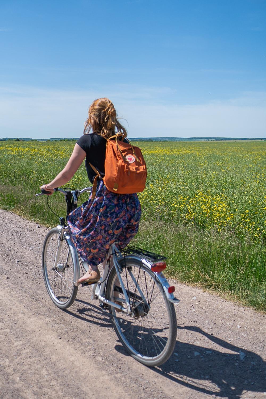 Fahrradtour von Erfurt nach Alach