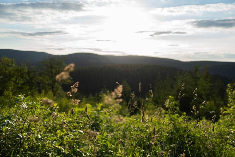 Aussicht von Oberhof auf den Thüringer Wald