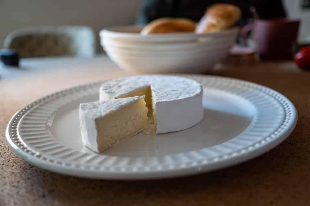 Selber Käse machen